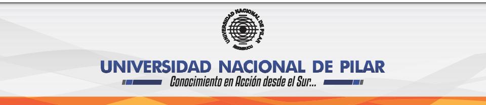 UNIVERSIDAD NACIONAL DE PILAR
